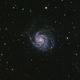 M101,                                zoyah