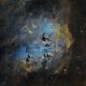IC410 Tadpoles,                                Girish