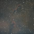 IC 1396,                                Başak Demirel