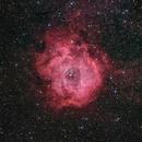 Cosmic Rose,                                Johannes Bock