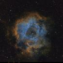 NGC2244 - Rosette Nebula,                                DrewAlvey