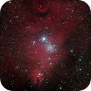 NGC 2264, Cone and Fox Fur,                                Carsten Jacobs
