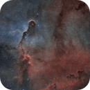 Elephant Trunc Nebula IC1396A,                                pete_xl