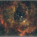 NGC2244 Rosette Nebula 800mm Crop,                                AndreP