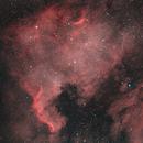 North America Nebula,                                webeve