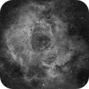 Rosette Nebula Ha,                                Vittorio