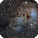 IC410 Emission Nebula,                                Emilio Zandarin
