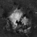 North America Nebula in Ha,                                Jarrett Trezzo