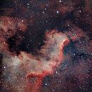 NGC 7000 - America Nebula,                                Dan Gallo