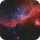 Seagull Nebula and friends,                                Patrick Hsieh