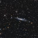 NGC 7640,                                Roberto Marinoni