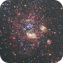 Environs of the Bean Nebula NGC 1763 in the LMC,                                DavidLJ