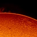 2019.05.18 Sun AR12741 H-Alpha,                                Vladimir