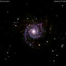 m74 galassia   nei pesci                                                                    distanza 35 milioni  A.L.,                                Carlo Colombo
