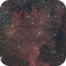 NGC7000  The North American Nebula,                                Ray Heinle