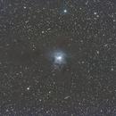NGC 7023 Iris,                                Seldom
