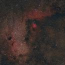 The Angelfish Nebula,                                Logan N