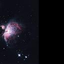 M42,                                Greg Polanski