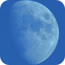 The Daytime Moon High-Res Mosaic (Click to show detail),                                Damien Cannane