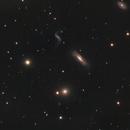 Leo Quartet (Hickson 44 Group); NGC3185, NGC3187, NGC3190, NGC3193,                                Benjamin Law