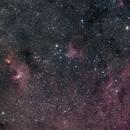 Statue of Liberty Nebula and Surrounding Area,                                Daniel F