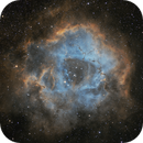 Rosette Nebula SHO,                                Alexander Golms