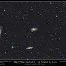Triplet du Lion L-RVB,                                quercus