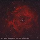 NGC 2244,                                Victoria