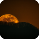 Moonrise in East TN,                                Donnie B.