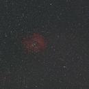 Rosette Nebula ( first attempt),                                Gary Leavitt