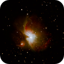 Orion Nebula,                                Chris Swift