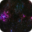 Tarantula Nebula NGC2070,                                Peter S Murdoch