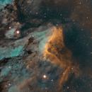 Pelican Nebula IC 5070,                                Avi Patil