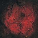 IC 1396 Elephant's Trunk,                                herwig_p