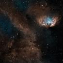 Tulip Nebula,                                Mike