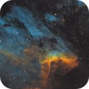 IC 5070 Pelican Nebula,                                Tim Trentadue