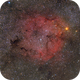 """IC 1396 and IC 1396A - Open Cluster Containing The Elephant's Trunk Nebula at 300mm,                                Sebastian """"BastiH..."""