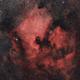 NGC7000 Ha-color,                                Ben