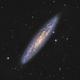 NGC 253 - Sculptor Galaxy (DSS),                                Martin Junius
