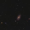 M109 in Ursa Major,                                Stephen Kirk