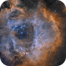 The Rosette Nebula NGC 2244,                                Bret Waddington