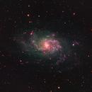 M33 - Triangulum Galaxy,                                Wouter Vangeel