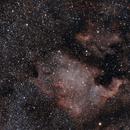 nébuleuses North America et du Pélican (constellation du cygne),                                laup1234