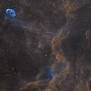 WR-134, Crescent (NGC6888) and Tulip (Sh2-101)  nebulae in the constellation Cygnus,                                Sasho Panov