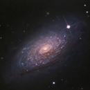 M63 - Sunflower Galaxy,                                Łukasz Sujka