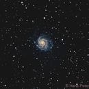 Pinwheel Galaxy M101,                                Hans-Peter Olschewski