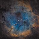 IC 1396 - Elephant Trunk,                                Victor Van Puyenbroeck