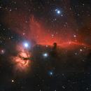 Horsehead and Flame Nebulas,                                Dale Hollenbaugh