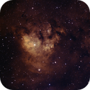 NGC 7822 - Cederblad 214 - LDN 1272,                                Roman Pearah