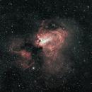 M17 Omega or Swan Nebula,                                starfield
